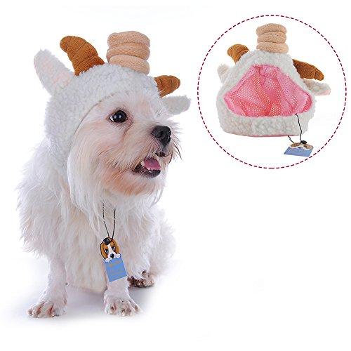 Molie mascota perro oveja de caca gorro sombrero vacaciones disfraz accesorios