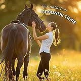 AniForte kaltgepresstes Leinöl 5 Liter- Naturprodukt für Hunde, Katzen & Pferde - 5