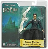 Harry Potter Comic Con Exclusive Harry Potter With Hedwig, Perch, And Base