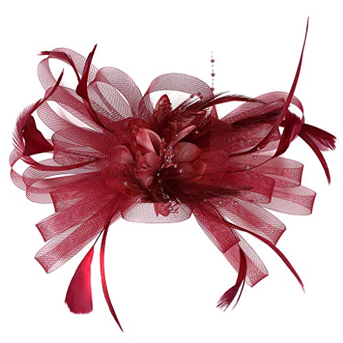 Damen Fascinators Hut Blume Bänder Federn auf einem Stirnband Haarspange, LEEDY Retro 20er Jahre Mesh Hair Clip Haarnadel Gericht Haarband Party Headwear Stirnbänder Kopfbedeckung