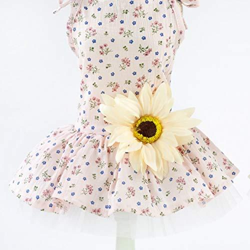 fghfhfgjdfj Modische Haustier Hund Kleid Frühling Sommer Hund Kleidung Kleider Hund Kleid kleine Daisy Rock Hund Kleidung (Daisy Hunde Kostüm)