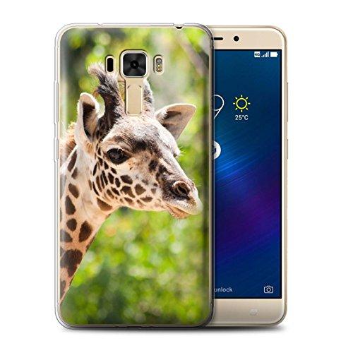 Stuff4® Gel TPU Hülle/Case für Asus ZenFone 3 Laser ZC551KL / Giraffe Muster/Wilde Tiere Kollektion