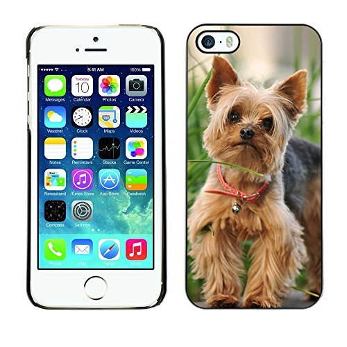 [ For APPLE IPHONE 5 / 5S ][ Xtreme-Cover ][ Custodia Protettiva Case Shell ] - Cute Happy Yorkie