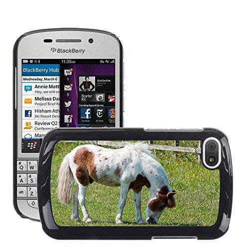 Just cover Hot Style Cell Phone PC hard case cover//M00140281cavallo pony pascolo abbastanza equine//BlackBerry Q10