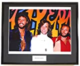 THE BEE GEES/FRAMED Foto