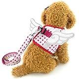 SMALLLEE_LUCKY_STORE Pet Fancy Dots Angel Wings Walking Harness Vest Leash Set, Pink, X-Large