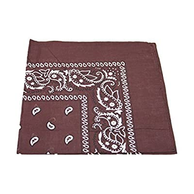 Paisley Pattern 100% Cotton Bandana for Pet Dogs from Robelli