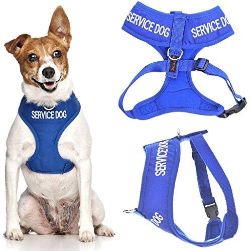 Service Hund (Do Not Disturb/Hund ist Arbeiten) blau Farbe Kodiert non-pull Vorder- und Rückseite D-Ring gepolstert und wasserdicht Weste Hundegeschirr verhindert Unfälle durch vorwarnen anderer Hunde in Advance (kleine Hals bis zu 31 cm Brust 36-58cm) Advance Vest