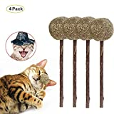 HAIT Catnip Ball Lollipop Molar Cleaning Tooth Stick,4Pack