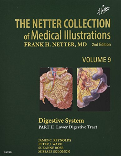 The Netter Collection of Medical Illustrations: Digestive System: Part II - Lower Digestive Tract: 9 (Netter Green Book Collection)