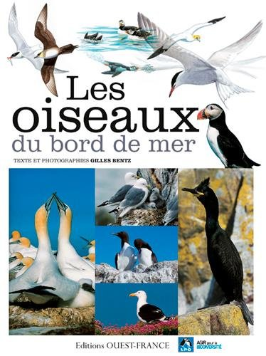 Oiseaux du Bord de Mer