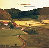 Songtexte von Triosence - When You Come Home