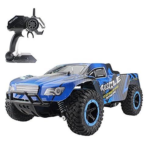 Hugine 1:16 25Km / h haute vitesse RC voiture hors véhicule de route 2.4G voitures de course rock crawler monster truck dune buggy extrême 4 roues indépendantes de suspension radio contrôle voitures pour les enfants adultes jouets hobby (Bleu)