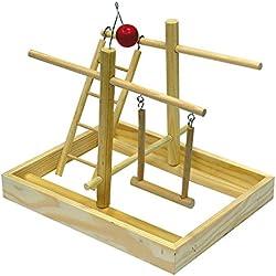 Croci gimnasio juguete para loros, pequeño