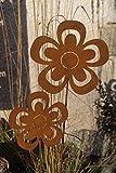 2 Edelrost Blumen offen auf Stab Gartenstecker Topfstecker Set Metall Blüten