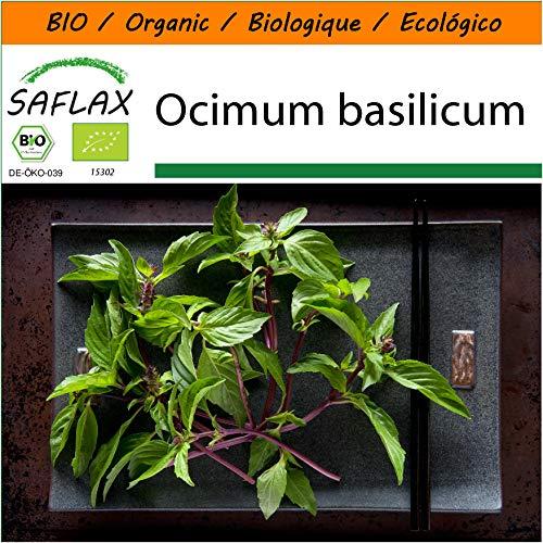 SAFLAX - Garden in the Bag - BIO - Basilikum Thai - 250 Samen - Mit Anzuchtsubstrat im praktischen, selbst aufstellenden Beutel - Ocimum basilicum - Garden In A Bag
