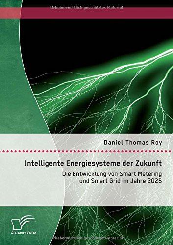 Intelligente Energiesysteme der Zukunft: Die Entwicklung von Smart Metering und Smart Grid im Jahre 2025 by Daniel Thomas Roy (2015-05-08)