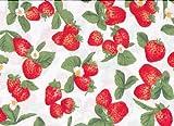 Welt der Kissen 12040 Bezug Stillkissen / Seitenschläferkissen, 120 x 40 cm, Erdbeeren