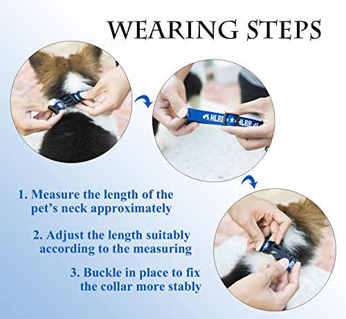 Flea and Tick Collar for All Kinds of Dogs and Cats - safe pet protection from pest bites infestations larvae lice… 6