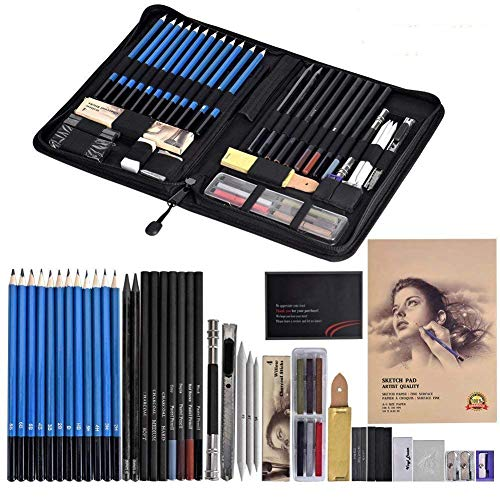 Cozywind Skizzieren Bleistifte Set für Künstler Bleistifte für Zeichnen Professionell Zeichenstifte Bleistifte Skizzierstifte Kunst Kit Zeichenwerkzeuge mit Etui 49 Stück