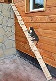 Ruhti - Katzentreppe Katzenleiter Katzenstufe für Balkon, Treppe etc.  1 bis 7 m (3 m)