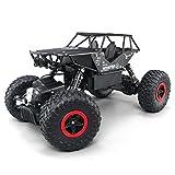 Rabing RC Road Rock Buggy tout terrain télécommandé 2,4GHz 4WD Haute vitesse 1:14Radiocommande électrique (Noir)