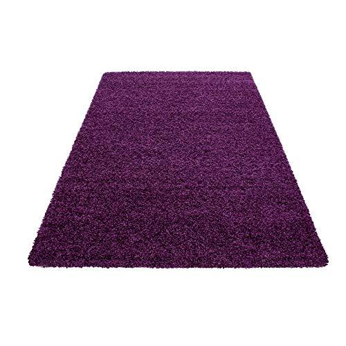 ich für Wohnzimmer Langflor Pflegeleicht Schadsstof geprüft 3 cm Florhöhe Oeko Tex Standarts Teppich, Maße:80x150 cm, Farbe:Lila ()
