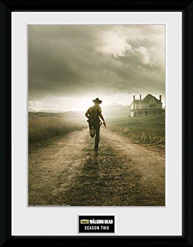 Preisvergleich Produktbild 1art1 100335 The Walking Dead - Season 2 Gerahmtes Poster Für Fans Und Sammler 40 x 30 cm