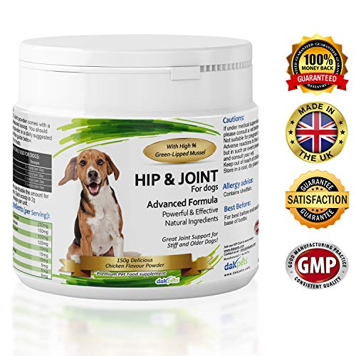 DakPets Advanced Hip and Joint Support Glucosamine for Dogs - Powerful Chondroitin, MSM, Curcumin & Green Lipped Mussel Dog Joint Supplement - with Vitamins E & C, Made in UK (Powder 150g)