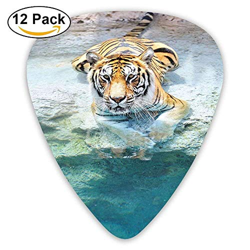 Picture Of A Bengal Tiger Lying Near The Water Wild Life Cave Stone Relax Clear Water Guitar Picks 12/Pack -