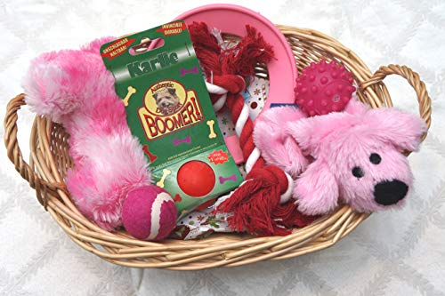 Paradise Pets PUPPIES FIRST CHRISTMAS WRAPPED DOG TOY GIFT HAMPER FOR HER