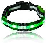 Leuchtendes LED- Sicherheits- Hundehalsband, extrem hell, längenverstellbar und mit 3 Leucht-Modi (S:19cm - 37cm, GRÜN)