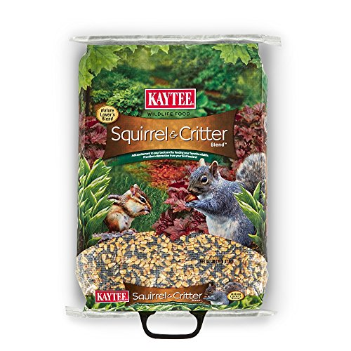 Kaytee Food Squirrel And Critter Attracts Backyard Visitors Apple Aroma 20lb
