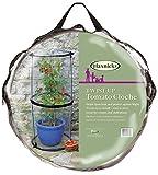 Tierra Garden Haxnicks Cloche010101-Glocke, transparent, 50x 50x 110cm