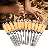 Generic 12Pcs Woodworking Wood Carving Hand Chisel Professional Tool Set