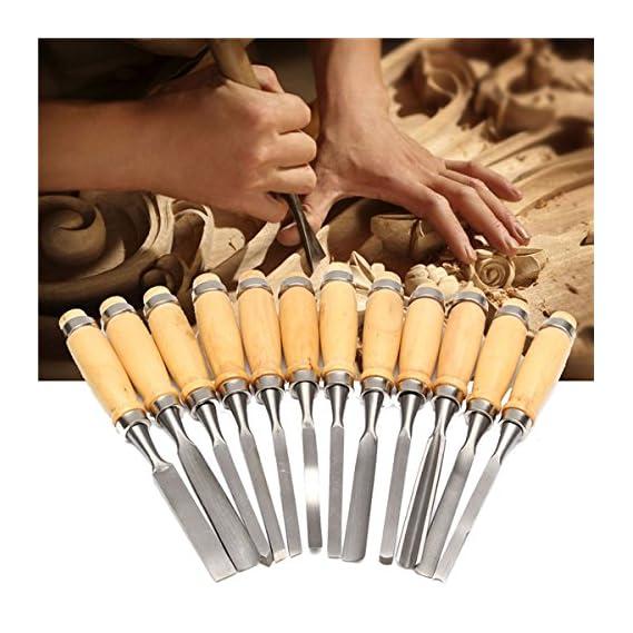 Generic 12Pcs Woodworking Wood Carving Hand Chisel Professional Tool Set