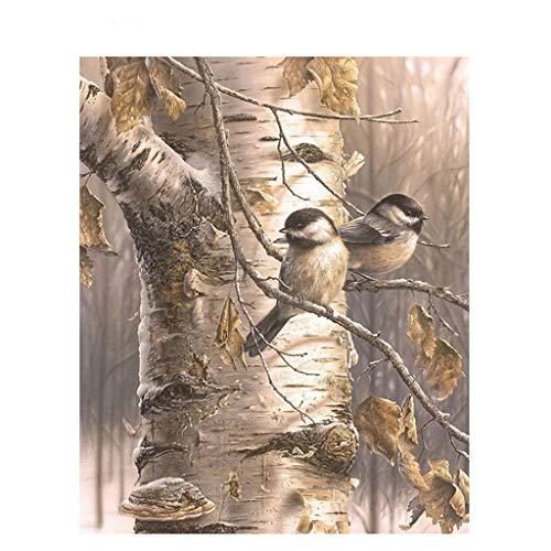 ECMQS DIY Malen Nach Zahlen Für Erwachsene Kinder - Vögel 40x50cm Leinen Segeltuch - DIY ölgemälde ölfarben Weihnachten Geschenke (ohne Rahmen) (Vögel ölgemälde)