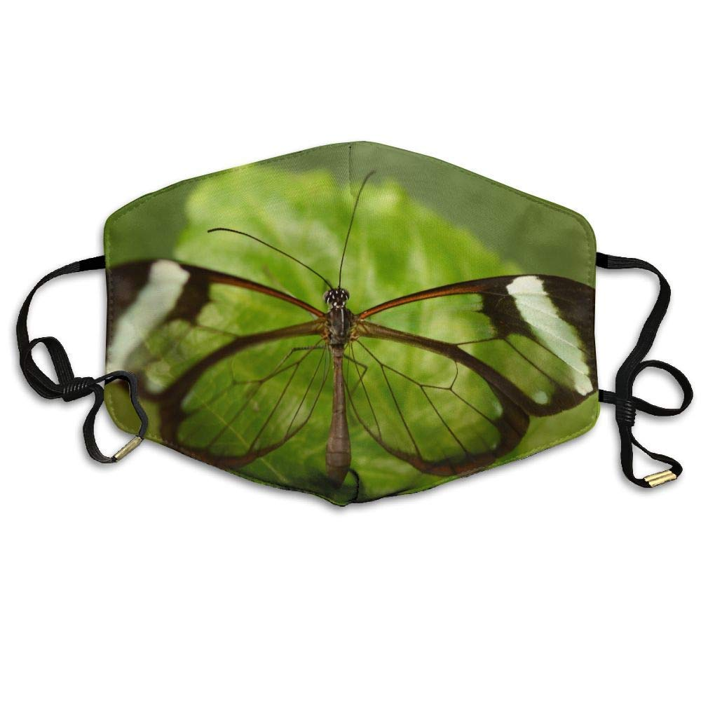 Daawqee Mascarillas, Transparent Butterfly Perched On Green Leaf Printed Mask Neutral Mask for Men and Women Polyester Dust-Proof Breathable Mask