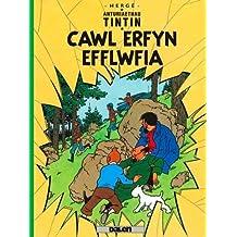 Cyfres Anturiaethau Tintin: Cawl Erfyn Efflwfia