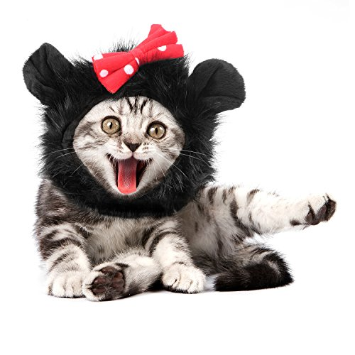 Pawaboo katzen Mähne,Haustier Perücke,Katzenbekleidung mit Ohren für Katze nur, für karneval, Kostüm, - Kostüm Für Katzen Nur