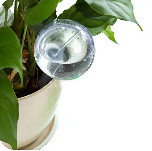 Automatische Bewässerungsvorrichtung Zimmerpflanze Blumentopf Zwiebel Globe Garden House Waterer -