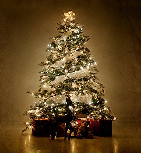 Lichterkette, LED Lichterketten mit EU Stecker, 22m, 200er, Warmweiß, Weihnachtsbaum Deko, für Innen und Außen, Erweiterbar, mit 31V DC Niederspannungs-Transformator 8 Funktionstype