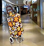 Flipzon Foldable Shopping Trolley Bag, Iron Kitchen Trolley, Multi Color