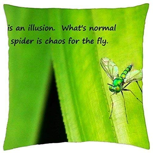 Burgund Illusion (dingjiakemao Normal is an Illusion - Throw Pillow Cover Case (18