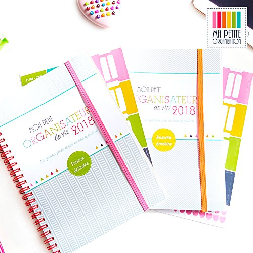 MY LITTLE LIFE PLANNER 2018 | A5 Family and professional organiser.  Help manage all aspects of our lives in one place. Limited Edition of 500 Copies in France!