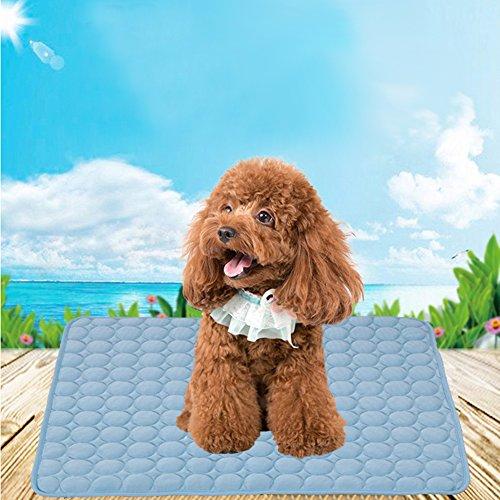 iBaste Kühlmatte für Hunde Matte 60cmx40cm Pads Pet Cooling Mat Betten mit selbstkühlendem Kühlgel Matte für Hundeboxen Zwinger-S (Mat Hundebox)