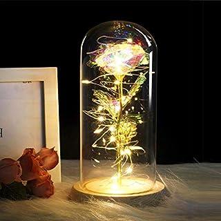 WYFDM Ewige Rose Blumen Kristall Schmuck Licht LED Lichterketten Damen Geschenke Hochzeitstag Valentinstag, Muttertagsgeschenke