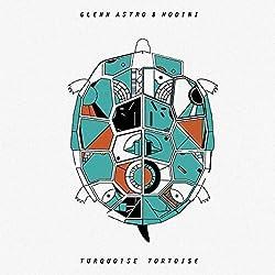 Turquoise Tortoise [Vinyl Lp]