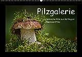 Pilzgalerie - Heimische Pilze aus der Region Rheinland-Pfalz (Wandkalender 2017 DIN A2 quer): 13 beeindruckende Pilzaufnahmen