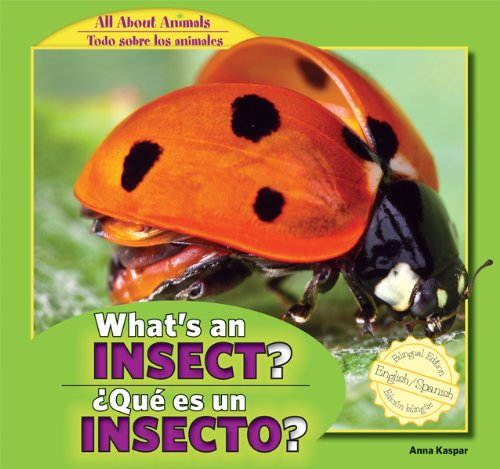 What's an Insect? / Que Es Un Insecto? (All About Animals / Todo Sobre Los Animales) por Anna Kaspar